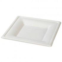 Eco-Friendly Plates