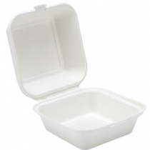 Bagasse Takeaway Packaging