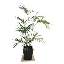 Artificial Kentia Palm Plant