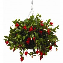 Artifical Hanging Basket Fushias 22inch
