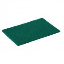 Scourer Green