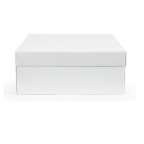 Cake Box 14inch