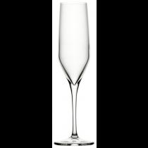 Napa Champagne Flutes 7oz / 20cl