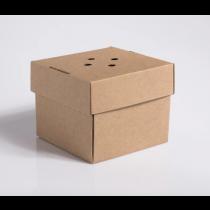 Compostable Premium Burger Box